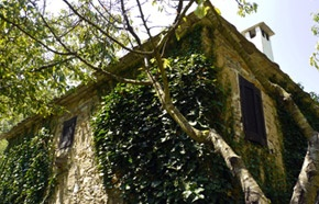 Ferienhaus in Paltsi