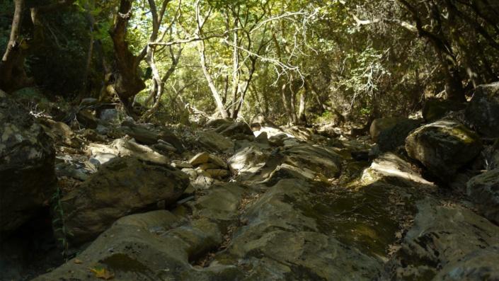 Ein trockenes Flusstal